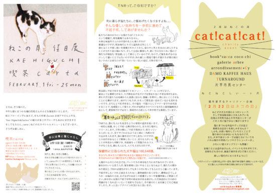 catcatcatチラシ案